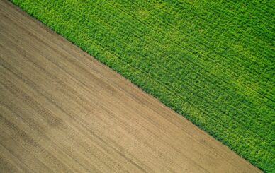A beautiful aerial shot of a green agricultural field